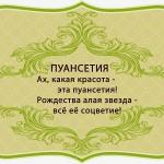 визитки цветов, комнатные растения в подарок, Пуансетия