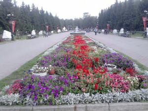 Центральная аллея парка. ЦПКиО, г.Екатеринбург