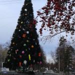 ЦПКиО. Новогодняя Ёлка