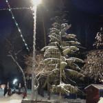 елки парк фото, новогоднее украшение города фото, елка фото дерево новогодняя, фото новогодней елки на улице, новогоднее украшение большого города, новогодние игрушки большая елка улице, новогодняя елка городе живая, новогодние елки 2016 екатеринбург