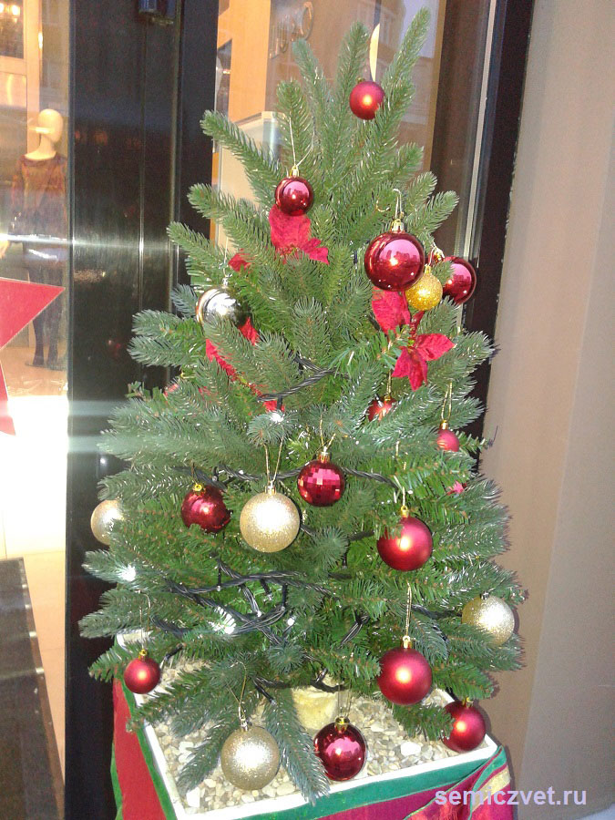 Новогодние украшения на городскую елку своими руками