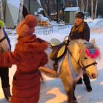 ЦПКиО. Пони для катания детей
