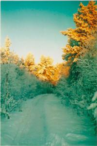 красота северной природы, жизнь за полярным кругом, заполярье россии, заполярье север, природа заполярья, кольское заполярье