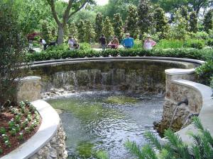 дендропарк водопад, магнолия растение фото, магнолия крупноцветковая, южная магнолия, магнолия magnolia, магнолия сад, магнолия картинки, растение магнолия, флора магнолия, дендропарк фото