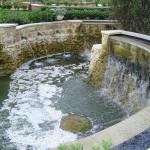 дендропарк пруд, дендропарк водопад, магнолия сад, дендропарк фото