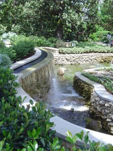 дендропарк водопад, дендропарк пруд, цветущее дерево магнолии, магнолия сад, дерево магнолия фото, дендропарк фото