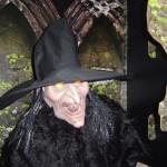 ведьма хэллоуин, аксессуары хэллоуин, товары хеллоуин, хэллоуин сша, хэллоуин день всех святых, костюмы хэллоуин интернет магазин, хэллоуин игрушки, американский хэллоуин, декор хэллоуин, halloween