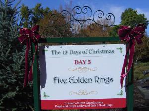 12 дней рождества, 12 дней рождества песня, двенадцать дней рождества, рождество сша, рождество америка, даллас сша, дендропарк фото, красивые места Америки