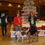 массовый забег, jingle bell run, рождественский забег, зимние спортивные мероприятия, штат Техас США, традиции Америки