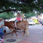 техасский бык, лонгхорн, техасские лонгхорны, родео быки, бык огромные рога, дикий запад сша, штат техас сша, форт уорт техас