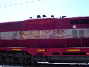дикий запад сша, приключение дикий запад, ковбои дикий запад, жизнь дикий запад, жд экскурсия, страница истории сша, grapevine vintage railroad