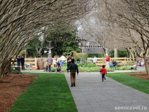 символы техаса, праздник цветов фото, весна цветы тюльпаны, цветущий парк, дендропарк фото