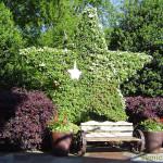 штат одинокой звезды, дендропарк фото, красивые места америки, штат техас сша, ботанический сад дендропарк