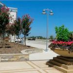 Миртовые деревья и цветы. Магазин «Мебель из Небраски», штат Техас, США