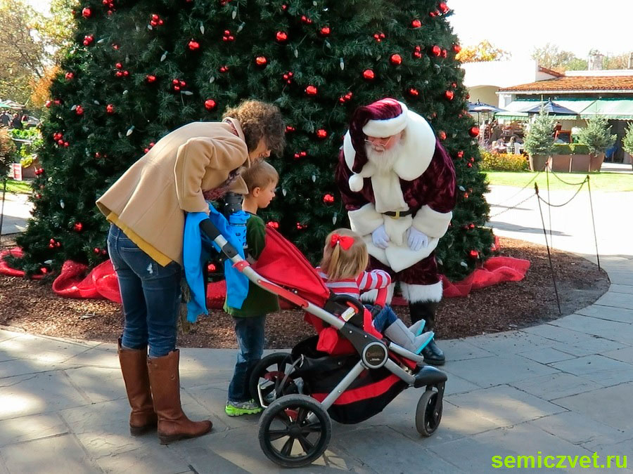 современный санта клаус фото, миссис санта клаус фото, миссис клаус фото, костюм миссис клаус фото, праздник рождества фото, даллас техас, штат техас сша, зимние праздники новый год рождество