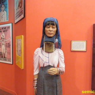 женщины народа падаунг бирма, женщины народа падаунг, вытягивание шеи кольцами, украшение на шею в виде кольца, племя где женщины носят кольца на шее, музей рипли, роберт рипли, шоу рипли, музей странности, музей рипли хотите верьте хотите нет