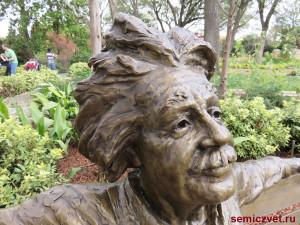 альберт эйнштейн, фото скамейка парке, скамейка парке картинки, скульптура виде скамейки, скульптура из бронзы, парк скамейками, скамейки отдыха парке, скульптуры на скамейке, авторские работы мастера, скамейка парке, скамейки парковые, великий учёный эйнштейн, учёный альберт эйнштейн, учёный эйнштейн, даллас техас, штат техас сша