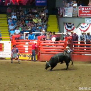 Объездка дикого быка. Каутаун Колизей, Форт-Уорт, Техас