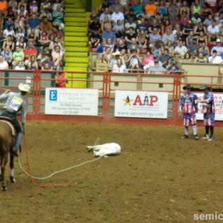 Ловля и стреноживание бычка. Родео. Каутаун Колизей, Форт-Уорт, Техас