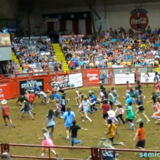 Детское состязание «Поймай бычка!». Стокъярдс Родео. Каутаун Колизей, Форт-Уорт, Техас