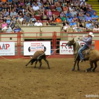 Командная ловля бычка лассо. Стокъярдс Родео. Каутаун Колизей, Форт-Уорт, Техас