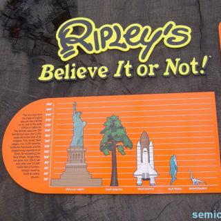 Музей Рипли. Информационный плакат на срезе гигантской секвойи
