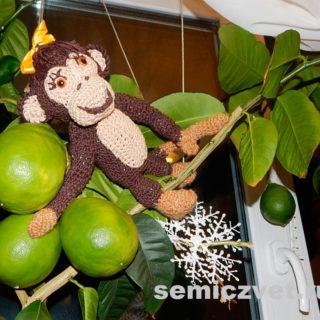 Мягкая игрушка - Обезьяна своими руками в домашнем тропическом лесу
