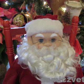 Рождественский Санта Клаус