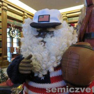 Санта-Дед Мороз спортсмен