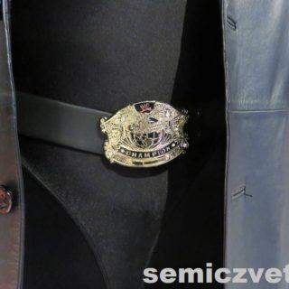 Пояс чемиона мира по рестлингу - Чемпион WWE