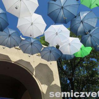 Техасские зонтики на Бульваре Мидуэй. Фэйр Парк, Даллас
