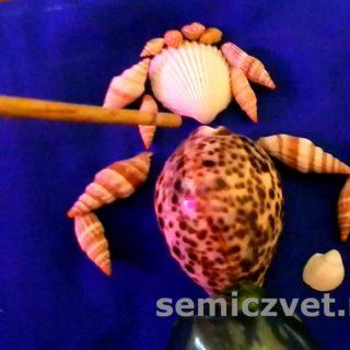Делаем куклу из морских ракушек