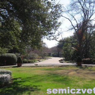 Дендрарий и Ботанический сад. Даллас. Техас