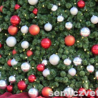 Рождественская ёлка. Дендропарк. Даллас. Техас