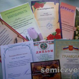 Г.Мачульская. Дипломы за участие в выставках