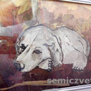 Г.Мачульская. Прессованная флористика. «Люблю я собаку…». 2017