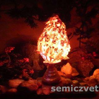 Творческая идея - яйцо-светильник из морских ракушек
