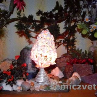 Яйцо-светильник из морских ракушек своими руками